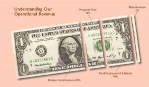 Understanding our operational revenue